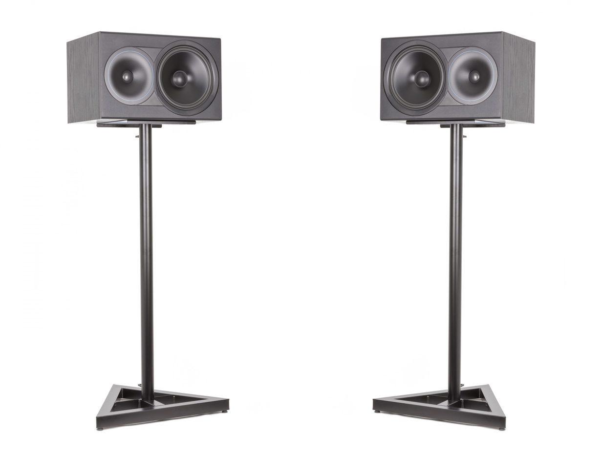 Black Speakers on Black Stands